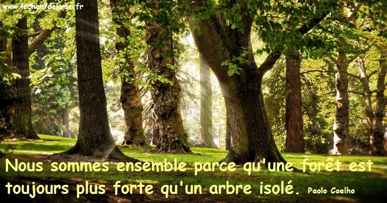 slogan forêt 1